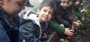 Eyüpsultan'ın çocukları çiçek ve fidan dikti