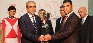 Haliliye Belediye Başkanlığı koşusunu 'Yıldızabakan' kazandı