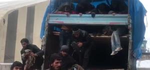 Erzurum'da 367 kaçak göçmen yakalandı