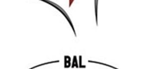 Aydın takımlarından BAL'da 2 galibiyet, 1 mağlubiyet