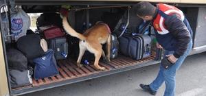 Jandarmadan köpekli yol denetimi