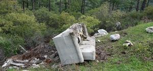 Duyarsız arıcılar ormanları çöplüğe çeviriyor