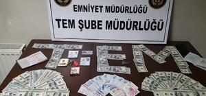 """FETÖ'den aranan """"il imamı"""" Sinop'ta yakalandı"""