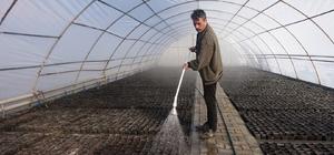 Yüz binlerce çiçek toprakla buluşmayı bekliyor