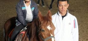 Pony ile hayvan sevgisi
