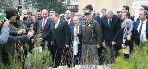 Bakanlar Şanlıurfa'da vatandaşlara fidan dağıttı