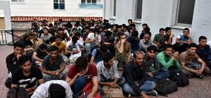 Tosya'da göçmen kaçakçılarına ceza yağdı