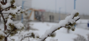 Ardahan'da kar sürprizi