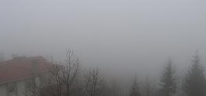 Zonguldak'ta sis etkili oldu