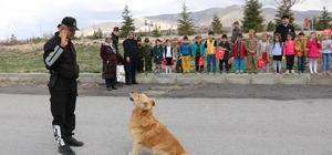Arama köpeği 'Aza' Anaokulu öğrencilerini hayran bıraktı