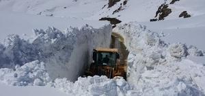 Hakkari'de karla mücadele