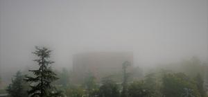 Samsun'da yoğun sis