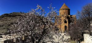 Akdamar Adası'nda doyumsuz bahar manzarası