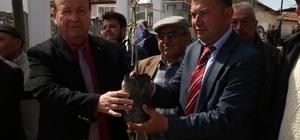 Efeler Belediyesi'nden 'Zeytin Dalı Harekatı'na zeytin fidanı ile destek