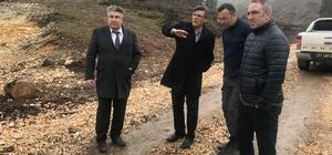 Sofular Yaylası'na 20 bin sarı çam fidanı dikilecek