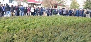 Afşin'de 83 bin çam fidanı dağıtıldı