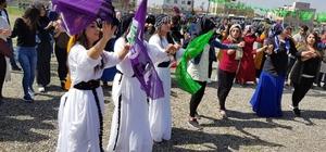 Siirt'te polis, kutlamalara katılanların kimliklerini çekti