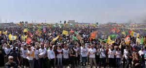 Mersin'de zeytin dallı nevruz kutlaması