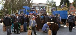Milas'ta 8 bin fidan dağıtıldı
