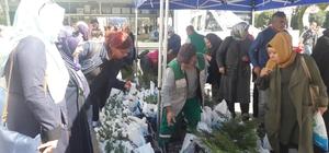 İzmit Belediyesi 30 bin adet fidan dağıtıyor