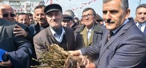 Yakakent'te 15 bin ceviz fidanı dağıtıldı