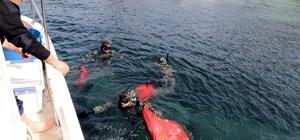 Kadıkalesi'nde deniz dibi temizliği