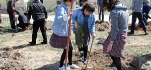 Akdağmadeni'nde öğrenciler okul bahçesine ağaç dikti