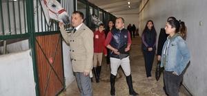 Eskişehir'de atlı terapi antrenörleri yetiştirilecek