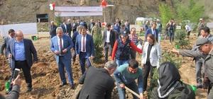 """Fatsa'da """"Afrin Şehitleri Hatıra Ormanı"""" kuruldu"""