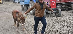 Arpaçay'dan Mehmetçik'e destek