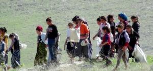 Kız çocukları, Göbeklitepe'de ot topluyor