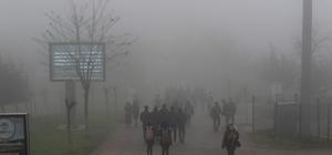 Kocaeli'de yoğun sis görüş mesafesi 10 metreye kadar düştü