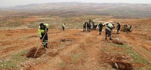 16. Etap Bi Dünya Yeşil Ormanı kuruluyor