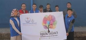 Kaman gençleri 'Gençlerin İyilik Ağacaı' projesi ile ağaç dikti