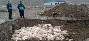 Kayseri´de 30 ton kaçak et ele geçirildi, imha edildi