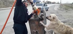 İşe geç kaldı ama köpeği kurtardı