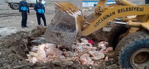 Kayseri'de 30 ton kaçak sakatat imha edildi