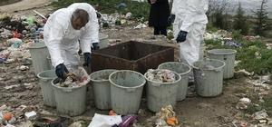 Zararlı atıkların büyük bir kısmını mutfak atıklarının oluşturduğu belirlendi