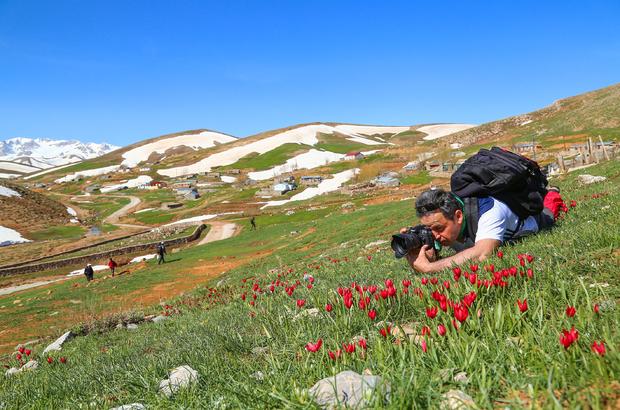 Doğa harikası Eğrigöl'e fotoğrafçı ilgisi