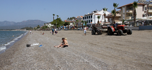 Caretta carettaların yumurta bıraktığı kumsal temizlendi