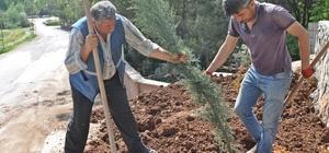 Gölbaşı ilçesinde ağaç dikim çalışmaları devam ediyor