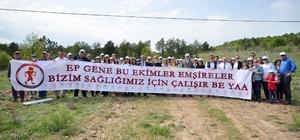 """Sağlık Hatıra Ormanı'na 400 fidan dikildi """"Ep gene bu ekimler, emşireler bizim için çalışır be yaa"""" yazılı pankart açıldı"""