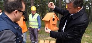 """Yuvayı dişi kuş yerine ormancılar yapıyor Kuşların evleri Orman Teşkilatından Eskişehir Orman Bölge Müdür Recep Temel: """"Kuşları ev sahibi yaparak zararlı böcekleri kontrol altında tutup kimyasal mücadele yapmaktan da kurtuluyoruz"""" """"Yılda ortalama 2 binden fazla yapay kuş yuvasını ormanlık alanlara yerleştiriyoruz"""""""