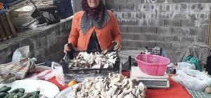 TKDK'dan aldığı destekle ürettiği mantarları pazarda satıyor