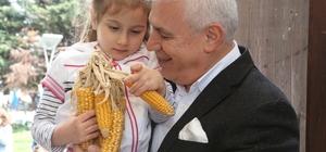 Binlerce yerli tohum Nilüfer'de el değiştirdi