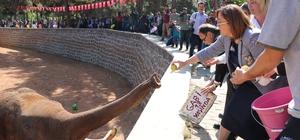 Tüp bebek fil için doğum günü sürprizi 5 tonluk filin doğum günü kutlandı
