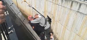 Su kanalına düşen yaşlı adamı itfaiye eri sırtına alarak kurtardı Dalgınlığı yaşlı adamın ölümüne sebep oluyordu