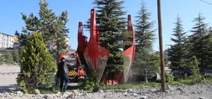 Sivas Belediyesi ağaçları naklediyor