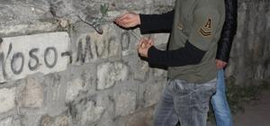 Demir parmaklığa sıkışan hamile kedi telef oldu Sivas'ta demir parmaklıklara sıkışan hamile kedi telef oldu