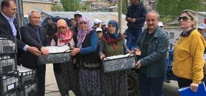 Kınalı eller çilek üretiyor Adana Büyükşehir Belediyesi'nin 4 yıldır başarıyla yürüttüğü Çilek Tutan Kınalı Eller Projesi'nde 5 ilçedeki kadın çiftçilere 770 bin adet çilek fidesi dağıtılıyor.